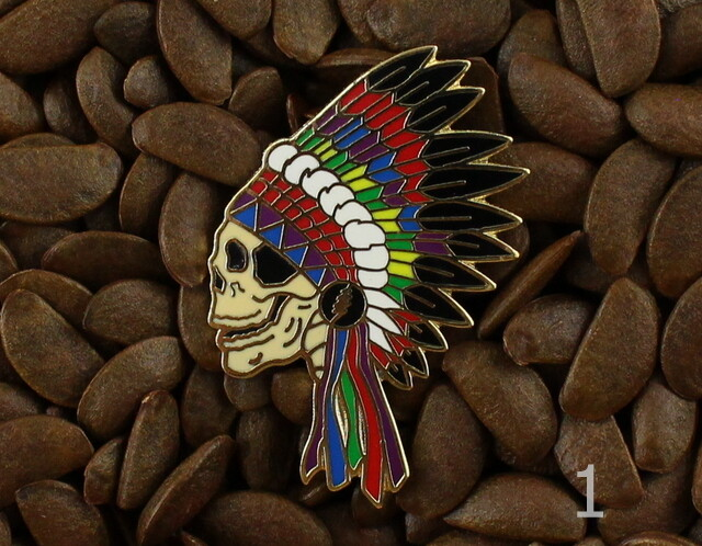 9431305afaf Grateful Dead Pins Native American Indian Headdress Skull Pin ...